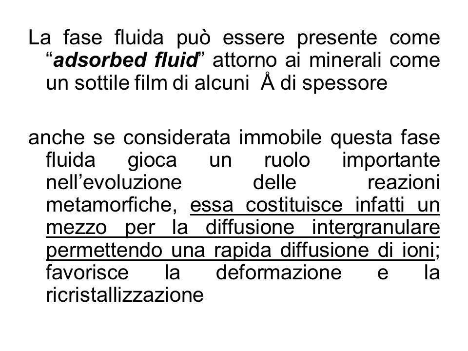 La fase fluida può essere presente comeadsorbed fluid attorno ai minerali come un sottile film di alcuni Å di spessore anche se considerata immobile q