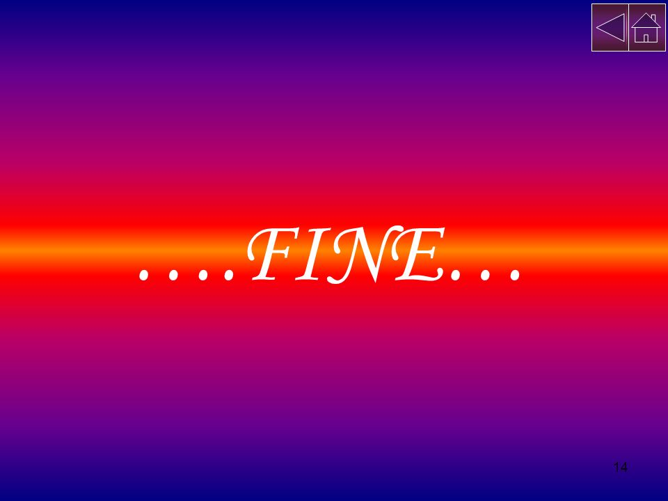 14 ….FINE…