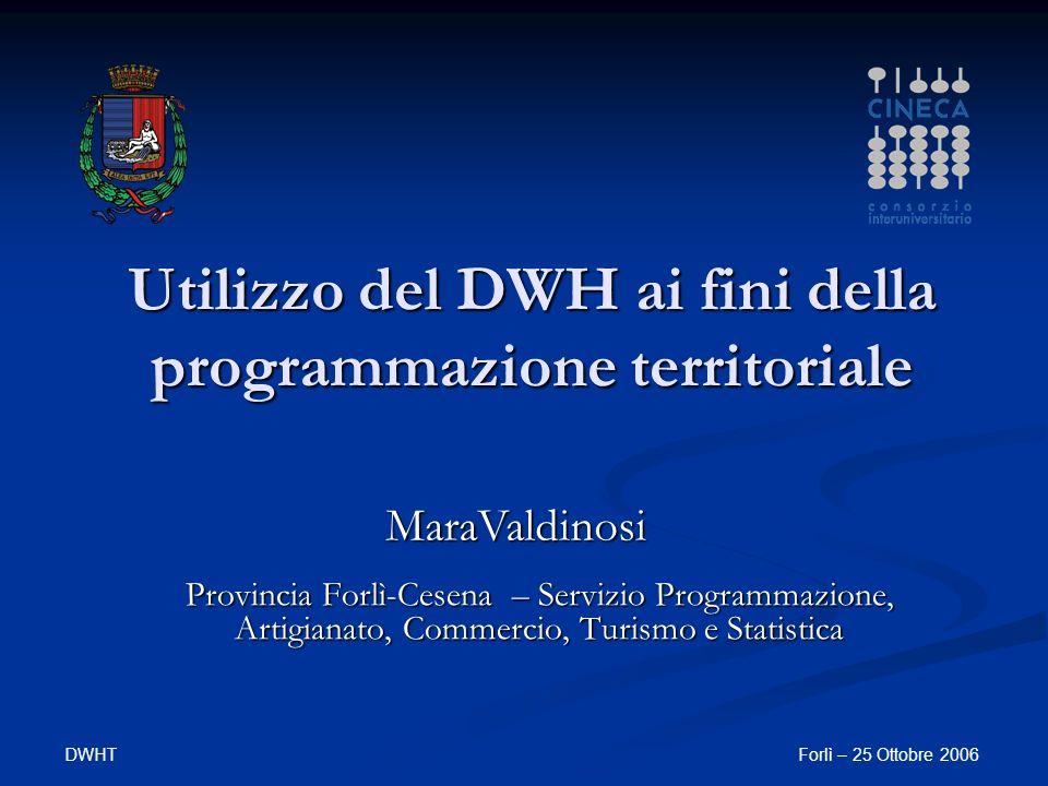 DWHTForlì – 25 Ottobre 2006 Utilizzo del DWH ai fini della programmazione territoriale Provincia Forlì-Cesena – Servizio Programmazione, Artigianato,