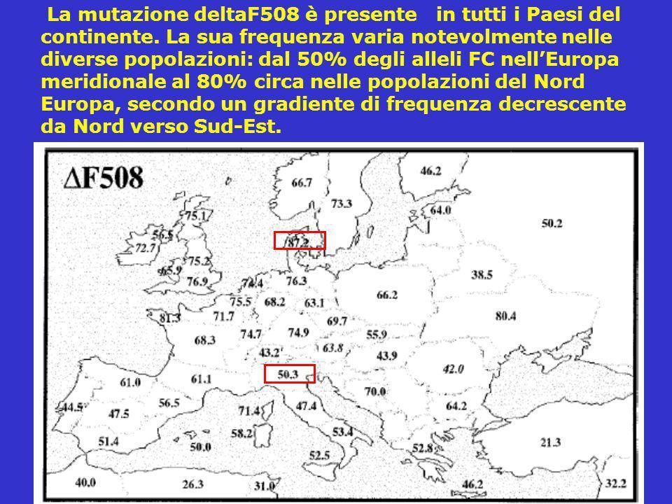 La mutazione deltaF508 è presente in tutti i Paesi del continente. La sua frequenza varia notevolmente nelle diverse popolazioni: dal 50% degli alleli