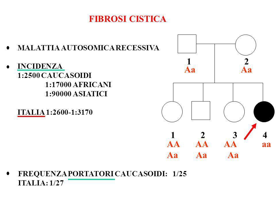 FIBROSI CISTICA MALATTIA AUTOSOMICA RECESSIVA INCIDENZA 1:2500 CAUCASOIDI 1:17000 AFRICANI 1:90000 ASIATICI ITALIA 1:2600-1:3170 FREQUENZA PORTATORI C