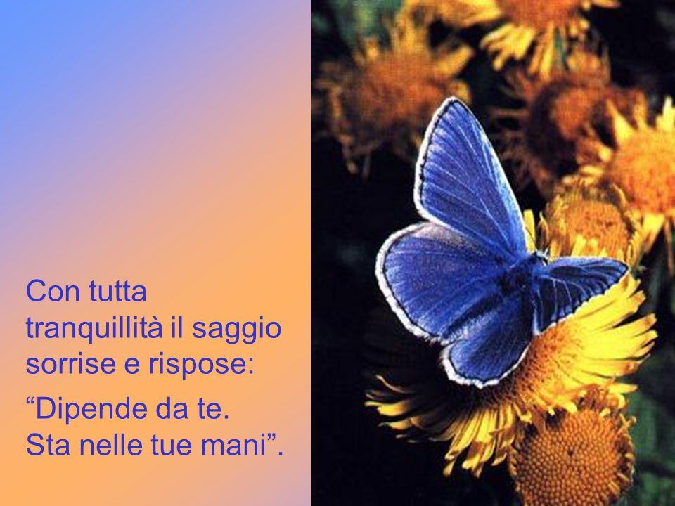 Le due bambine giunsero così dal saggio che stava meditando. Ho in mano una farfalla azzurra. Mi dica, o saggio: è viva o è morta?