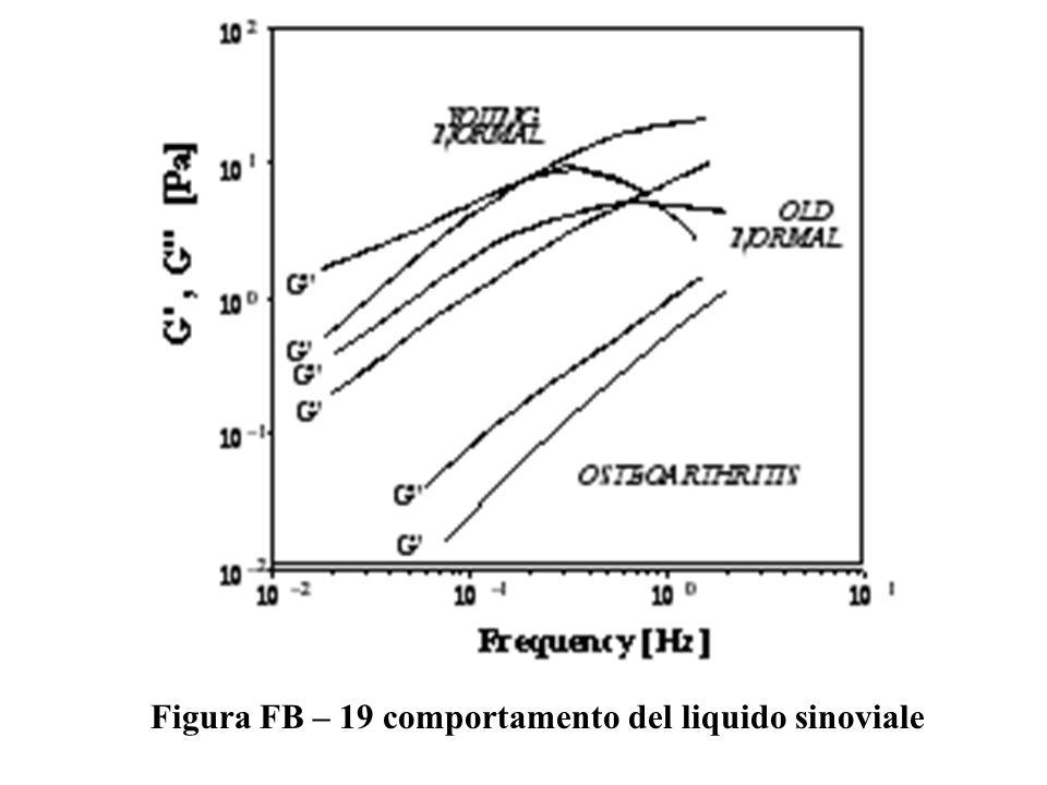 Figura FB – 19 comportamento del liquido sinoviale