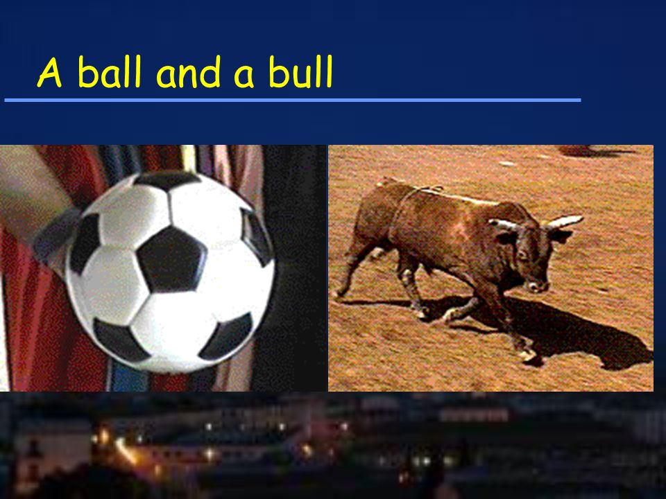 A ball and a bull