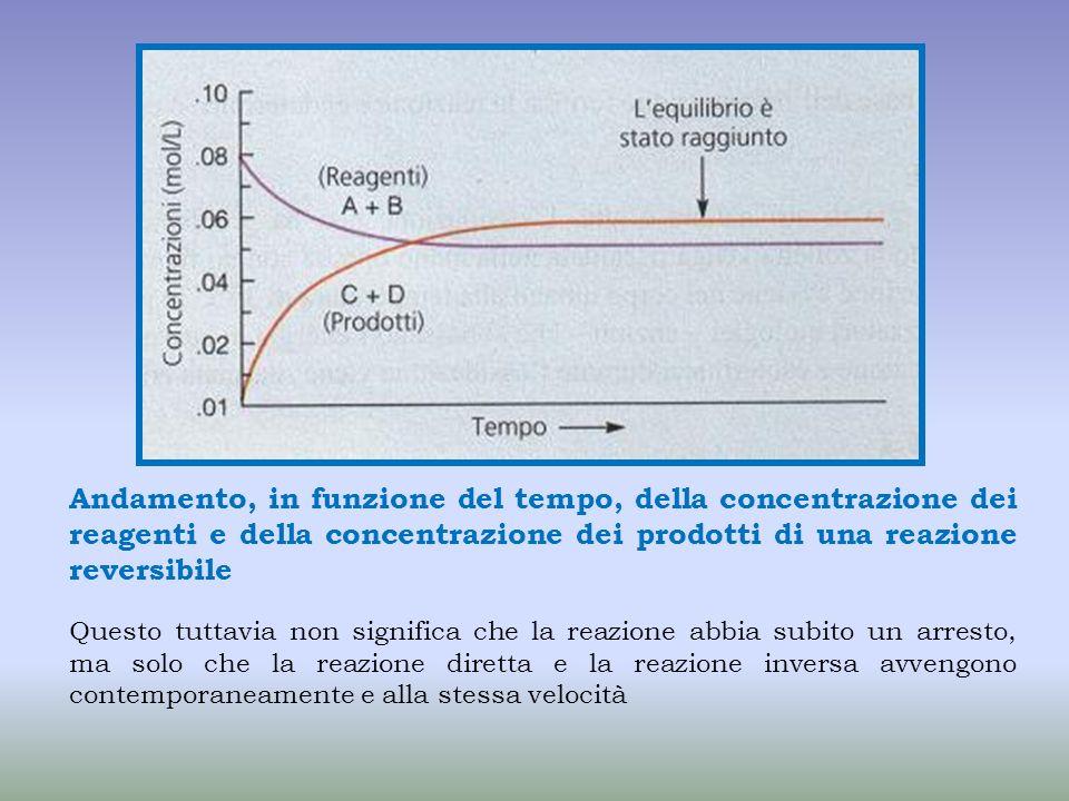 Andamento, in funzione del tempo, della concentrazione dei reagenti e della concentrazione dei prodotti di una reazione reversibile Questo tuttavia no