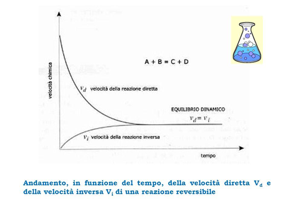 Andamento, in funzione del tempo, della velocità diretta V d e della velocità inversa V i di una reazione reversibile