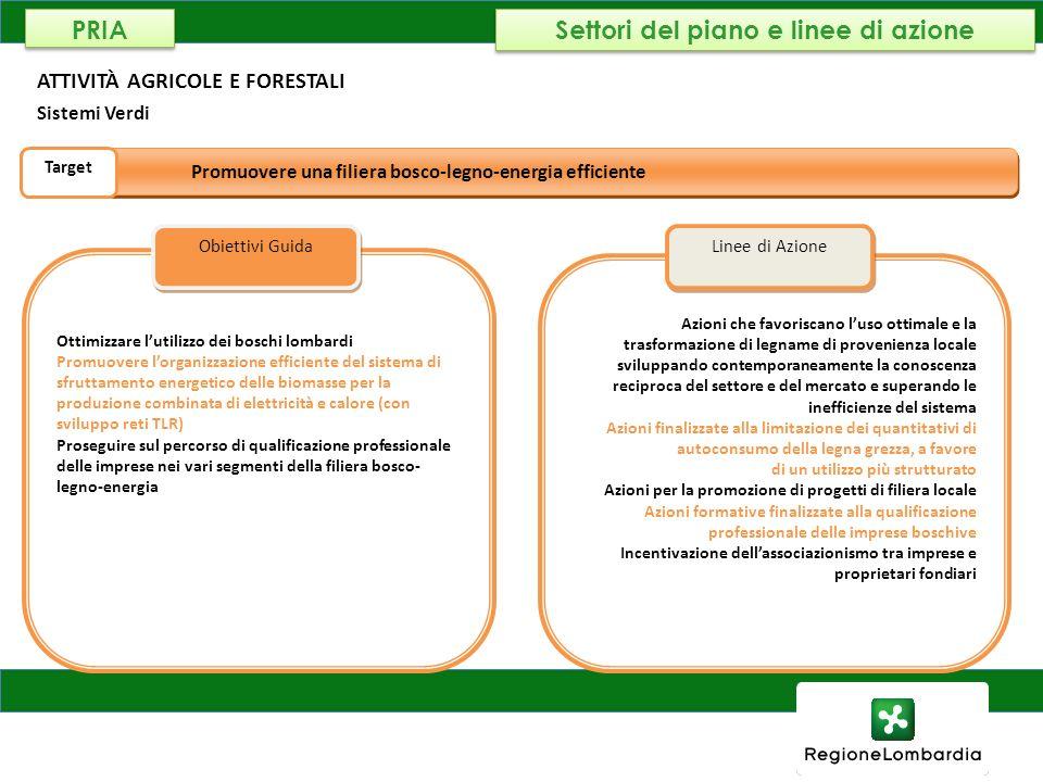 AMBIENTE, ENERGIA E RETI ATTIVITÀ AGRICOLE E FORESTALI Sistemi Verdi Ottimizzare lutilizzo dei boschi lombardi Promuovere lorganizzazione efficiente d