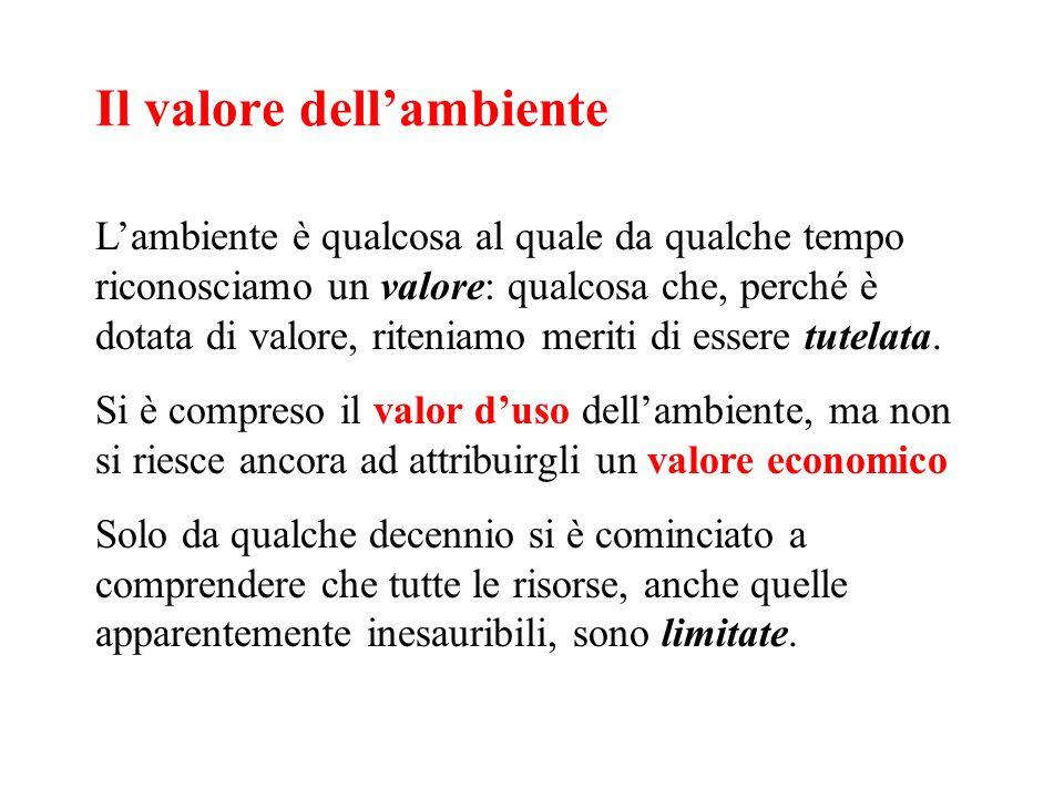 Il valore dellambiente Lambiente è qualcosa al quale da qualche tempo riconosciamo un valore: qualcosa che, perché è dotata di valore, riteniamo merit
