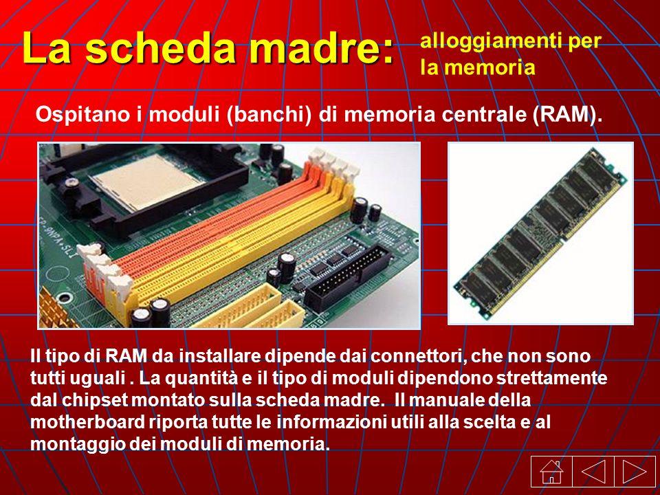 alloggiamenti per la memoria La scheda madre: Ospitano i moduli (banchi) di memoria centrale (RAM).