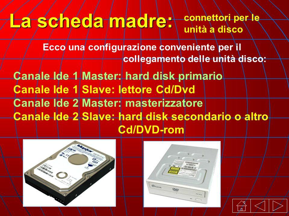 connettori per le unità a disco La scheda madre: Ecco una configurazione conveniente per il collegamento delle unità disco: Canale Ide 1 Master: hard disk primario Canale Ide 1 Slave: lettore Cd/Dvd Canale lde 2 Master: masterizzatore Canale Ide 2 Slave: hard disk secondario o altro Cd/DVD-rom