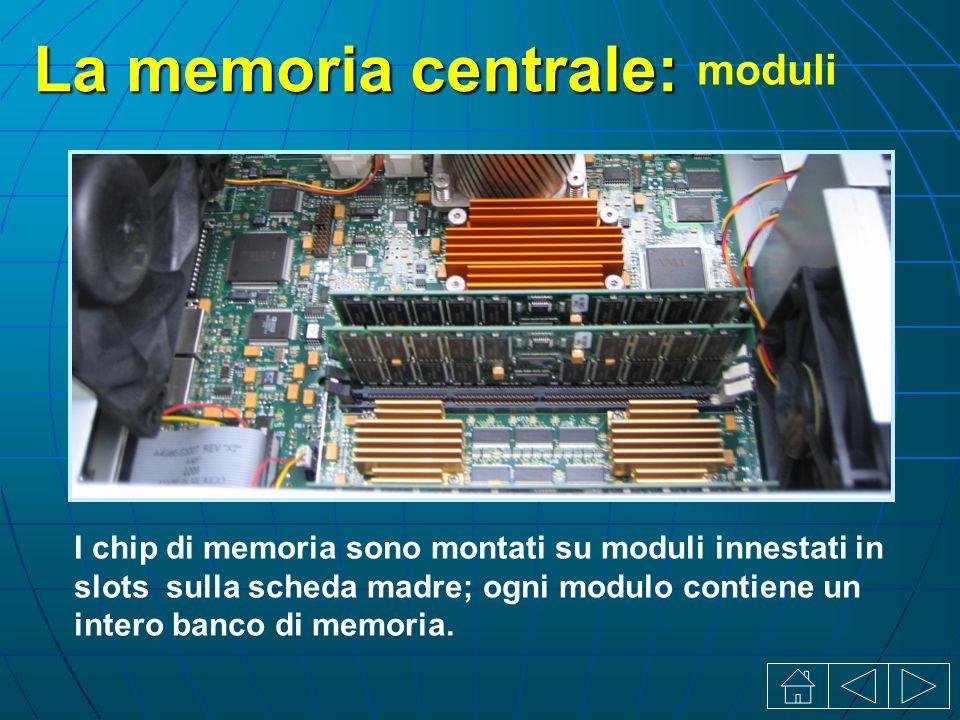 La memoria centrale: I chip di memoria sono montati su moduli innestati in slots sulla scheda madre; ogni modulo contiene un intero banco di memoria.