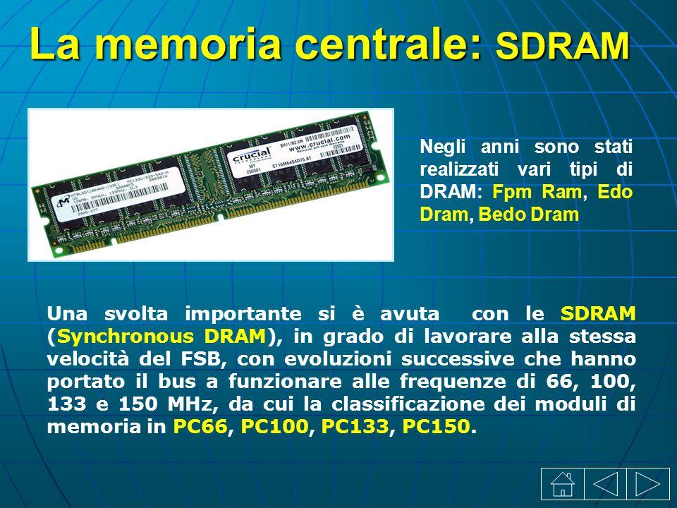 La memoria centrale: SDRAM Negli anni sono stati realizzati vari tipi di DRAM: Fpm Ram, Edo Dram, Bedo Dram Una svolta importante si è avuta con le SDRAM (Synchronous DRAM), in grado di lavorare alla stessa velocità del FSB, con evoluzioni successive che hanno portato il bus a funzionare alle frequenze di 66, 100, 133 e 150 MHz, da cui la classificazione dei moduli di memoria in PC66, PC100, PC133, PC150.