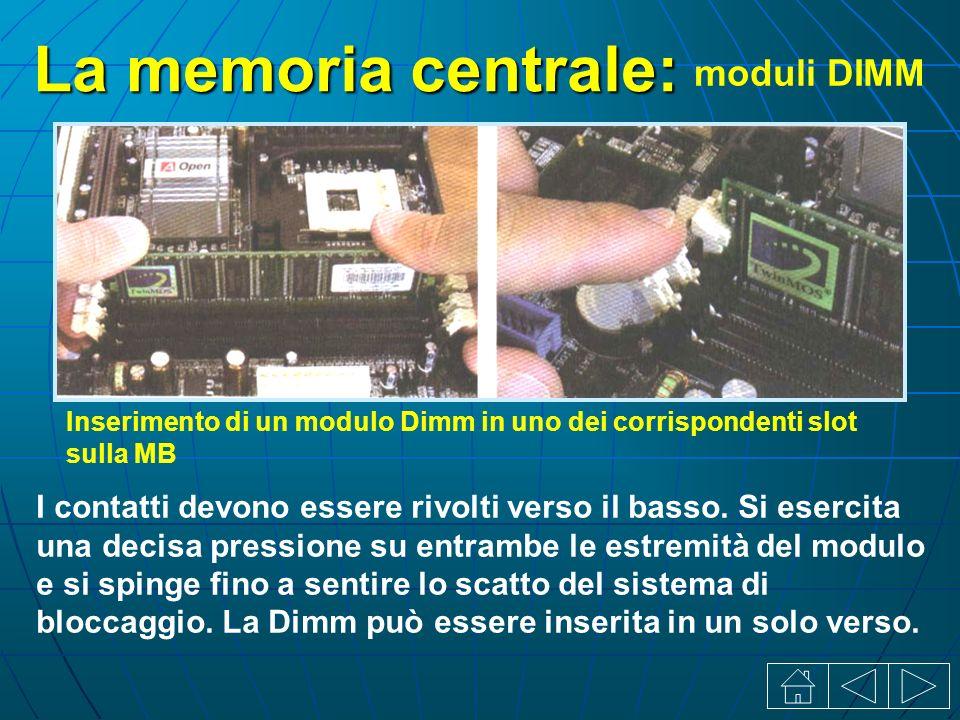La memoria centrale: moduli DIMM I contatti devono essere rivolti verso il basso.
