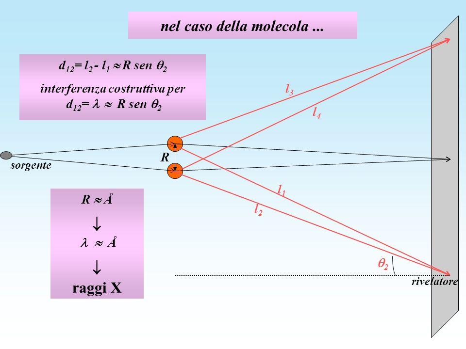 nel caso della molecola... R l2l2 l1l1 2 l4l4 l3l3 d 12 = l 2 - l 1 R sen 2 interferenza costruttiva per d 12 = R sen 2 R Å Å raggi X sorgente rivelat
