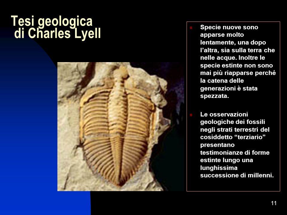 11 Tesi geologica di Charles Lyell Specie nuove sono apparse molto lentamente, una dopo laltra, sia sulla terra che nelle acque. Inoltre le specie est