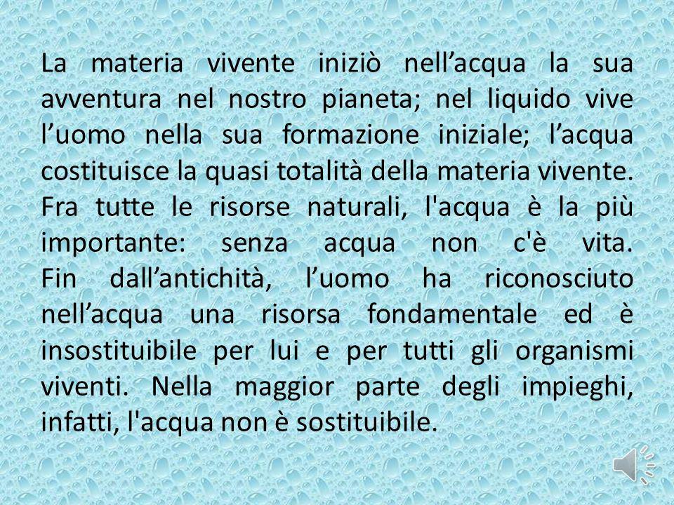 La materia vivente iniziò nellacqua la sua avventura nel nostro pianeta; nel liquido vive luomo nella sua formazione iniziale; lacqua costituisce la q
