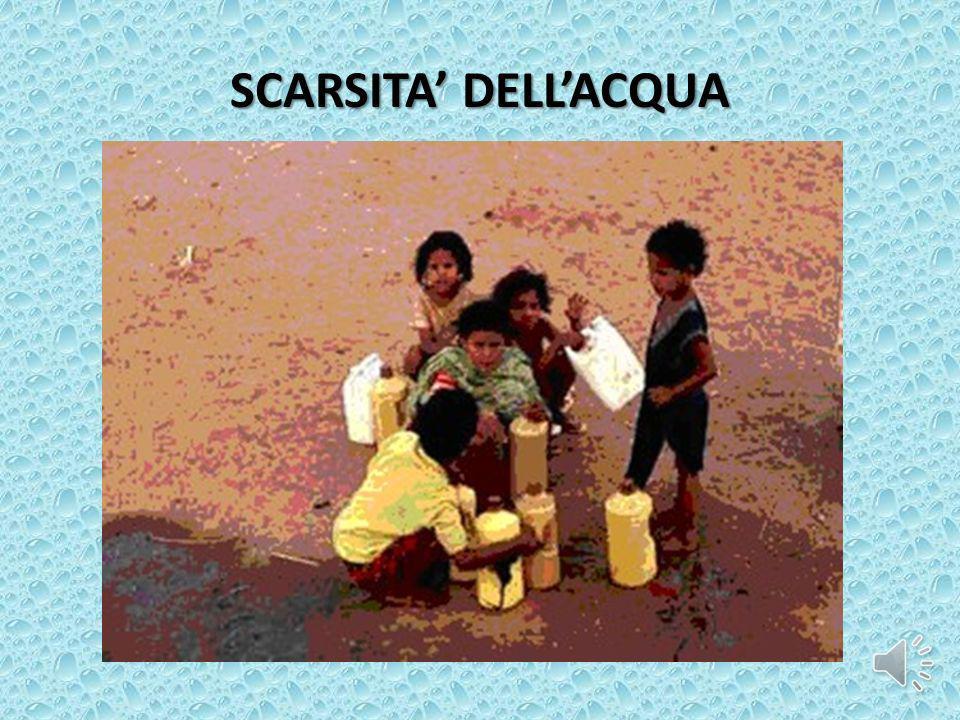 SCARSITA DELLACQUA