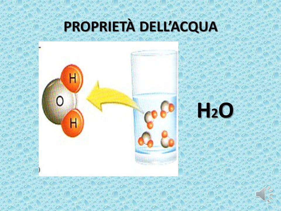 PROPRIETÀ DELLACQUA H2OH2OH2OH2O