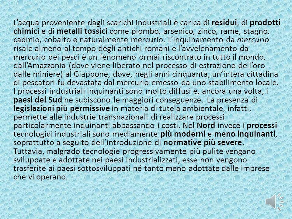 Lacqua proveniente dagli scarichi industriali è carica di residui, di prodotti chimici e di metalli tossici come piombo, arsenico, zinco, rame, stagno
