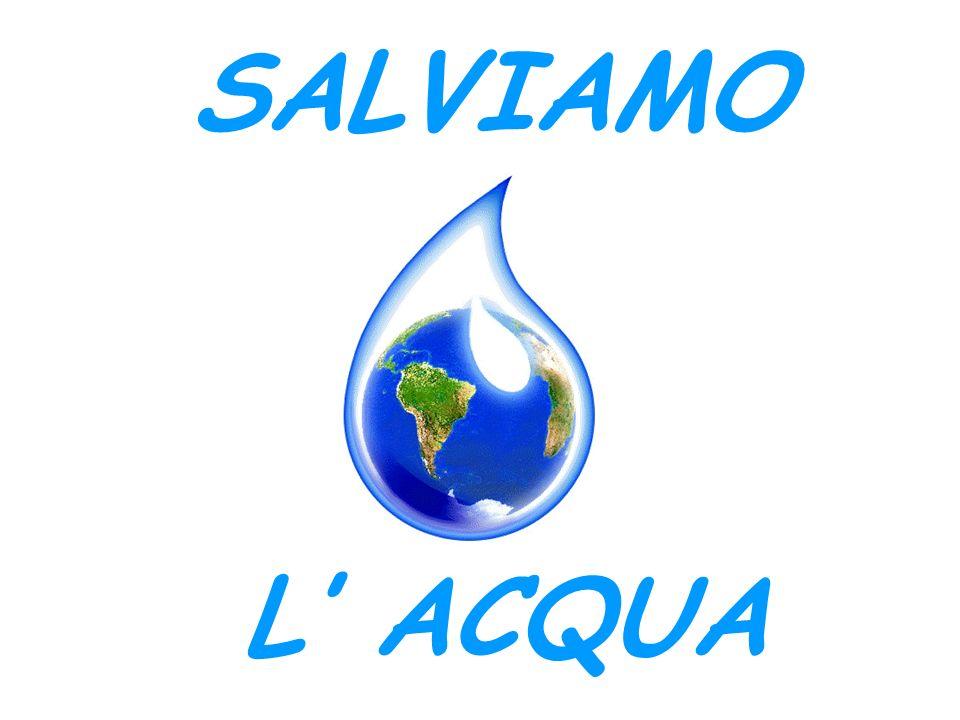 RIMARREMO SENZACQUA.La terra è ricca di beni: acqua, aria, minerali, vegetali, animali.