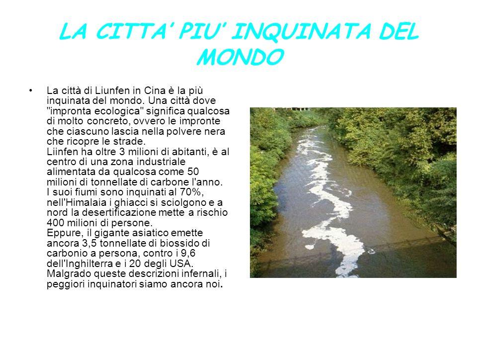 INDUSTRIE ITALIANE INQUINANTI Le imprese situate vicino a una zona inquinata possono essere considerate presunte responsabili del problema che si verifica.