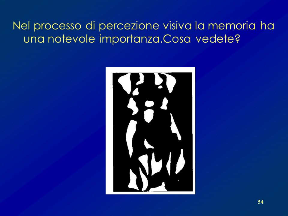54 Nel processo di percezione visiva la memoria ha una notevole importanza.Cosa vedete?
