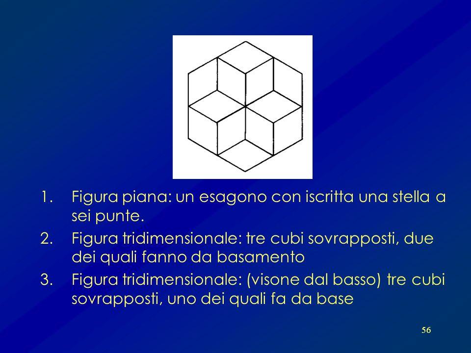 56 1.Figura piana: un esagono con iscritta una stella a sei punte. 2.Figura tridimensionale: tre cubi sovrapposti, due dei quali fanno da basamento 3.
