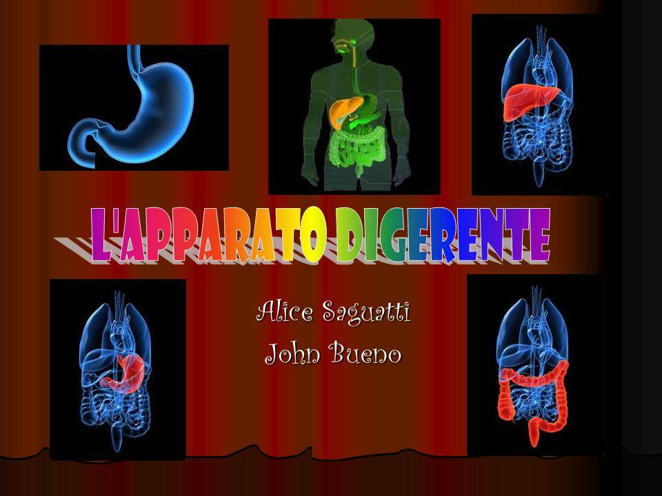 Alice Saguatti John Bueno