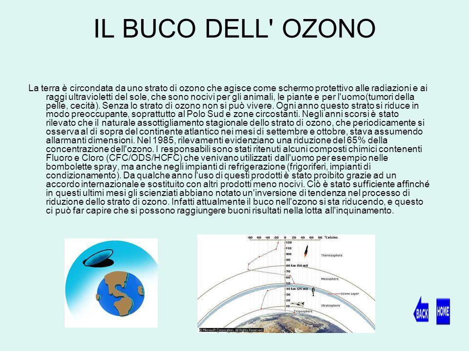 IL BUCO DELL OZONO La terra è circondata da uno strato di ozono che agisce come schermo protettivo alle radiazioni e ai raggi ultravioletti del sole, che sono nocivi per gli animali, le piante e per l uomo(tumori della pelle, cecità).