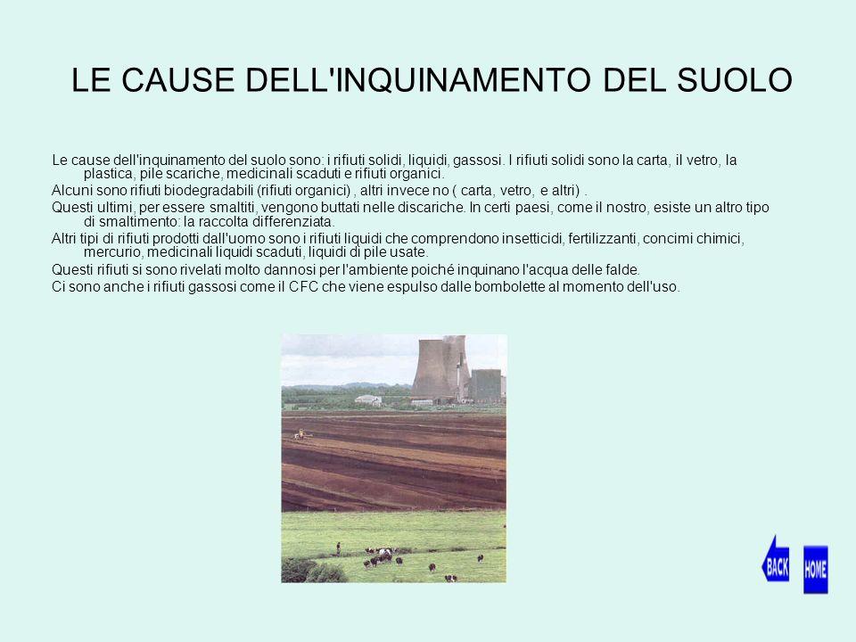 LE CAUSE DELL INQUINAMENTO DEL SUOLO Le cause dell inquinamento del suolo sono: i rifiuti solidi, liquidi, gassosi.