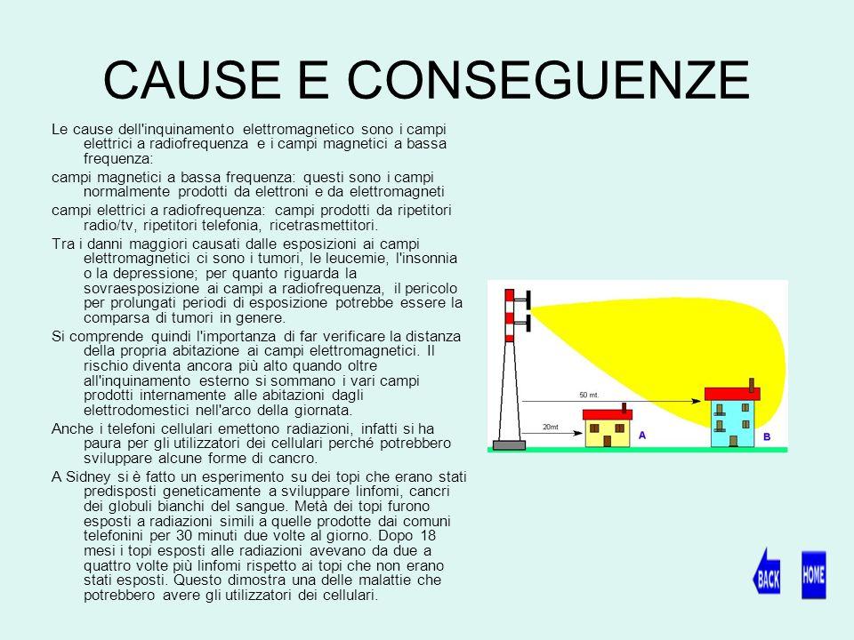 CAUSE E CONSEGUENZE Le cause dell inquinamento elettromagnetico sono i campi elettrici a radiofrequenza e i campi magnetici a bassa frequenza: campi magnetici a bassa frequenza: questi sono i campi normalmente prodotti da elettroni e da elettromagneti campi elettrici a radiofrequenza: campi prodotti da ripetitori radio/tv, ripetitori telefonia, ricetrasmettitori.