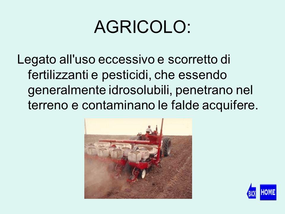 AGRICOLO: Legato all uso eccessivo e scorretto di fertilizzanti e pesticidi, che essendo generalmente idrosolubili, penetrano nel terreno e contaminano le falde acquifere.