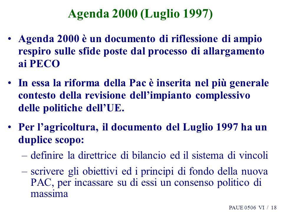 PAUE 0506 VI / 18 Agenda 2000 (Luglio 1997) Agenda 2000 è un documento di riflessione di ampio respiro sulle sfide poste dal processo di allargamento ai PECO In essa la riforma della Pac è inserita nel più generale contesto della revisione dellimpianto complessivo delle politiche dellUE.