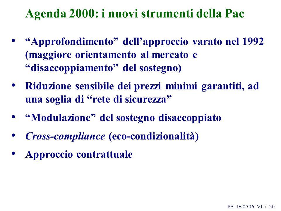 PAUE 0506 VI / 20 Agenda 2000: i nuovi strumenti della Pac Approfondimento dellapproccio varato nel 1992 (maggiore orientamento al mercato e disaccopp