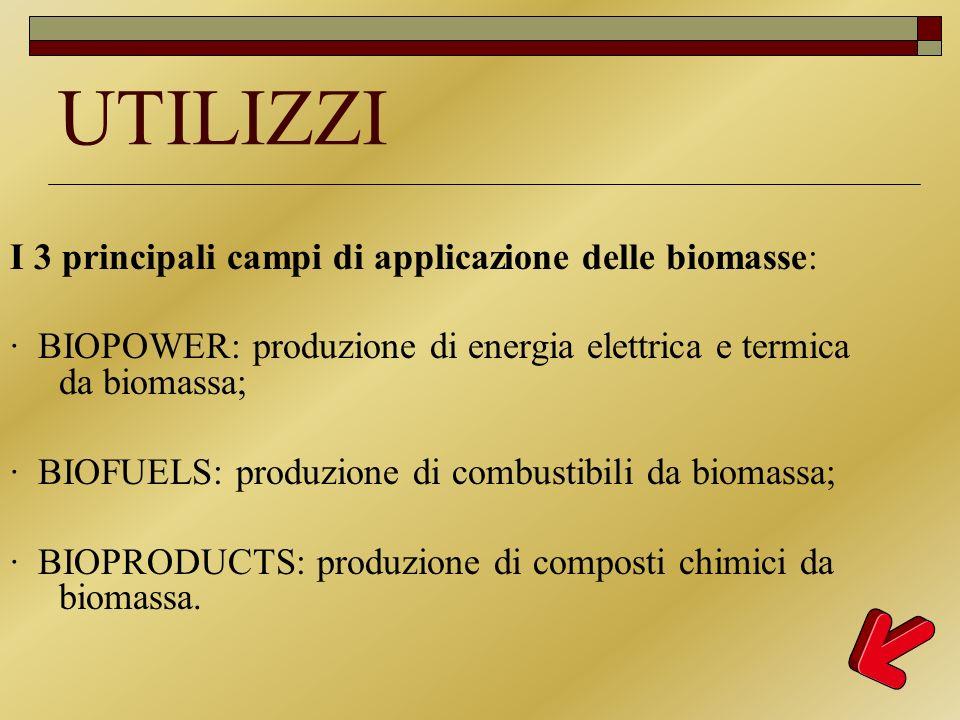 UTILIZZI I 3 principali campi di applicazione delle biomasse: · BIOPOWER: produzione di energia elettrica e termica da biomassa; · BIOFUELS: produzion