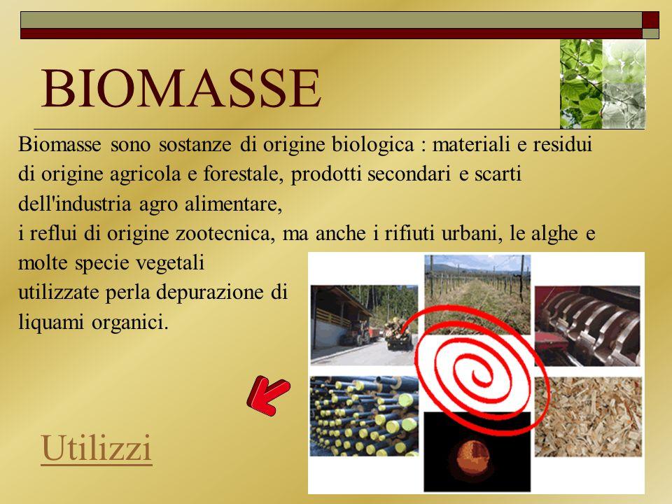 BIOMASSE Biomasse sono sostanze di origine biologica : materiali e residui di origine agricola e forestale, prodotti secondari e scarti dell'industria