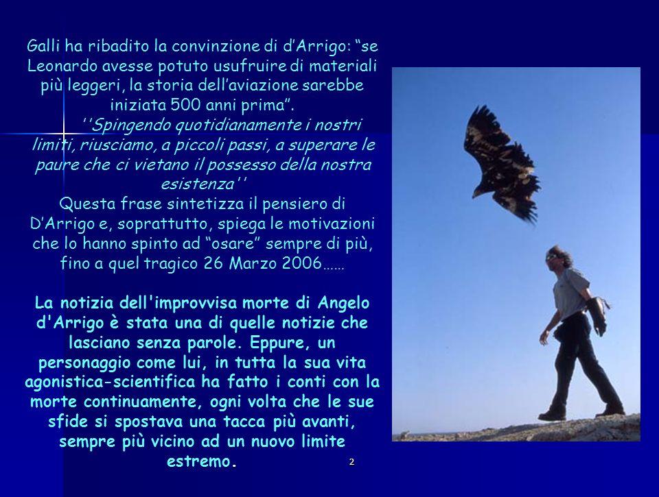 2 Galli ha ribadito la convinzione di dArrigo: se Leonardo avesse potuto usufruire di materiali più leggeri, la storia dellaviazione sarebbe iniziata