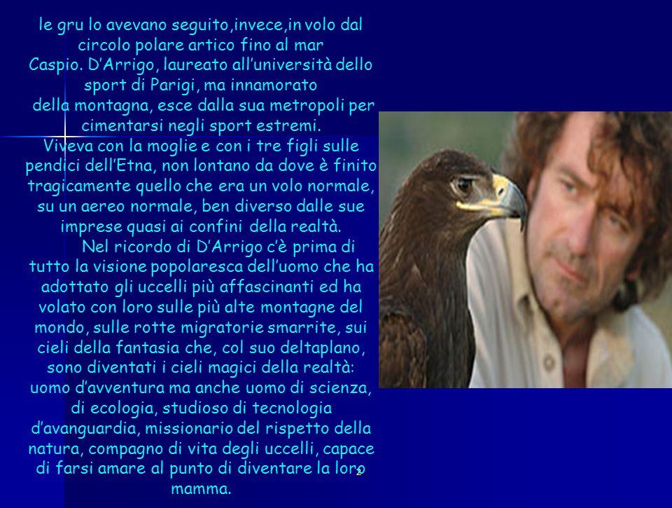 2 Galli ha ribadito la convinzione di dArrigo: se Leonardo avesse potuto usufruire di materiali più leggeri, la storia dellaviazione sarebbe iniziata 500 anni prima.