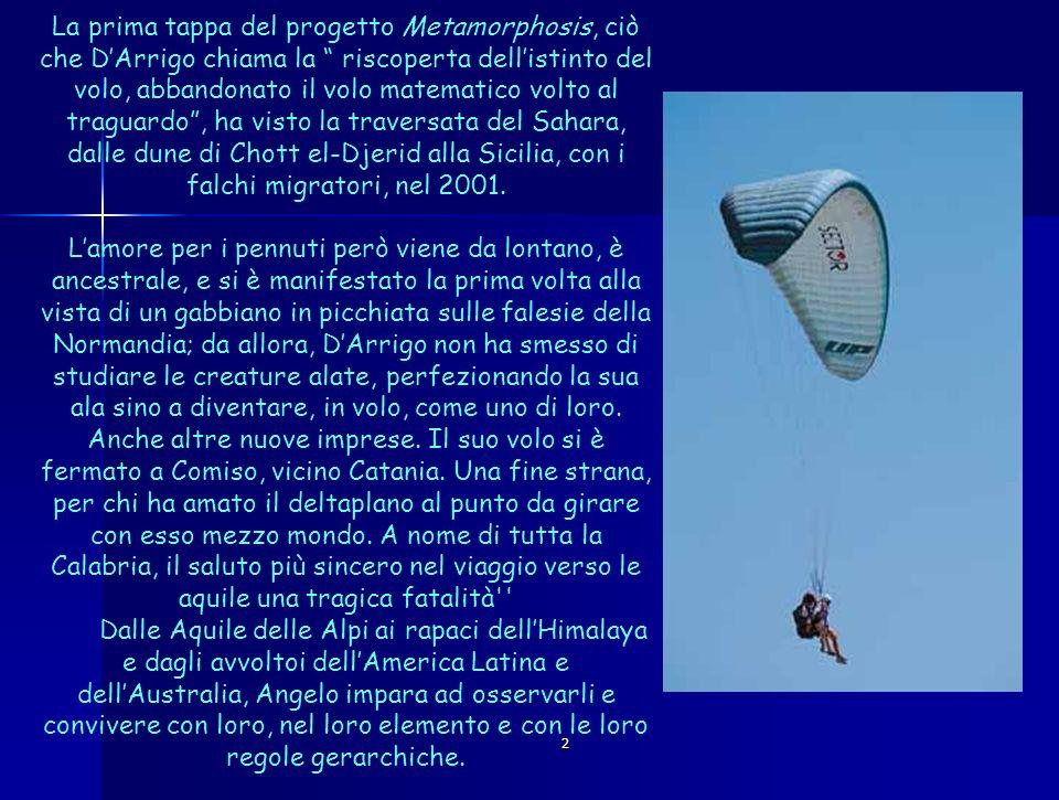 2 La prima tappa del progetto Metamorphosis, ciò che DArrigo chiama la riscoperta dellistinto del volo, abbandonato il volo matematico volto al tragua