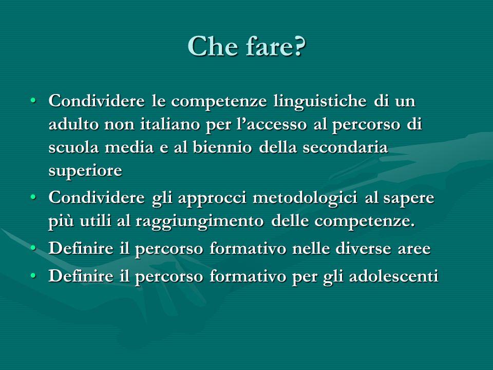 Condividere le competenze linguistiche di un adulto non italiano per laccesso al percorso di scuola media e al biennio della secondaria superioreCondi