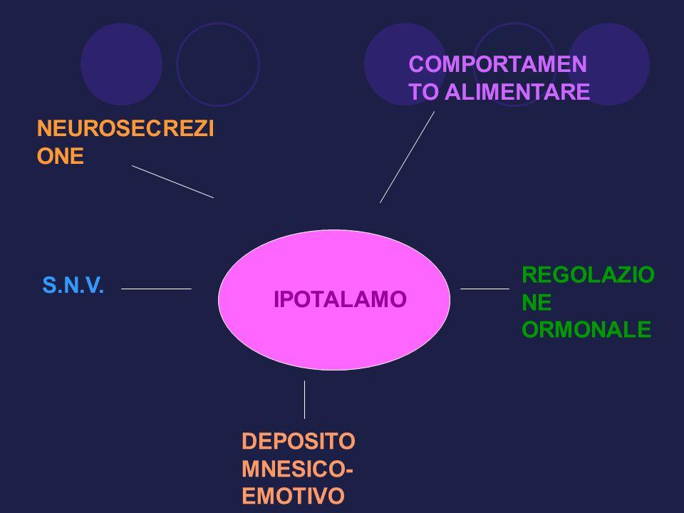 IPOTALAMO NEUROSECREZI ONE COMPORTAMEN TO ALIMENTARE DEPOSITO MNESICO- EMOTIVO S.N.V. REGOLAZIO NE ORMONALE