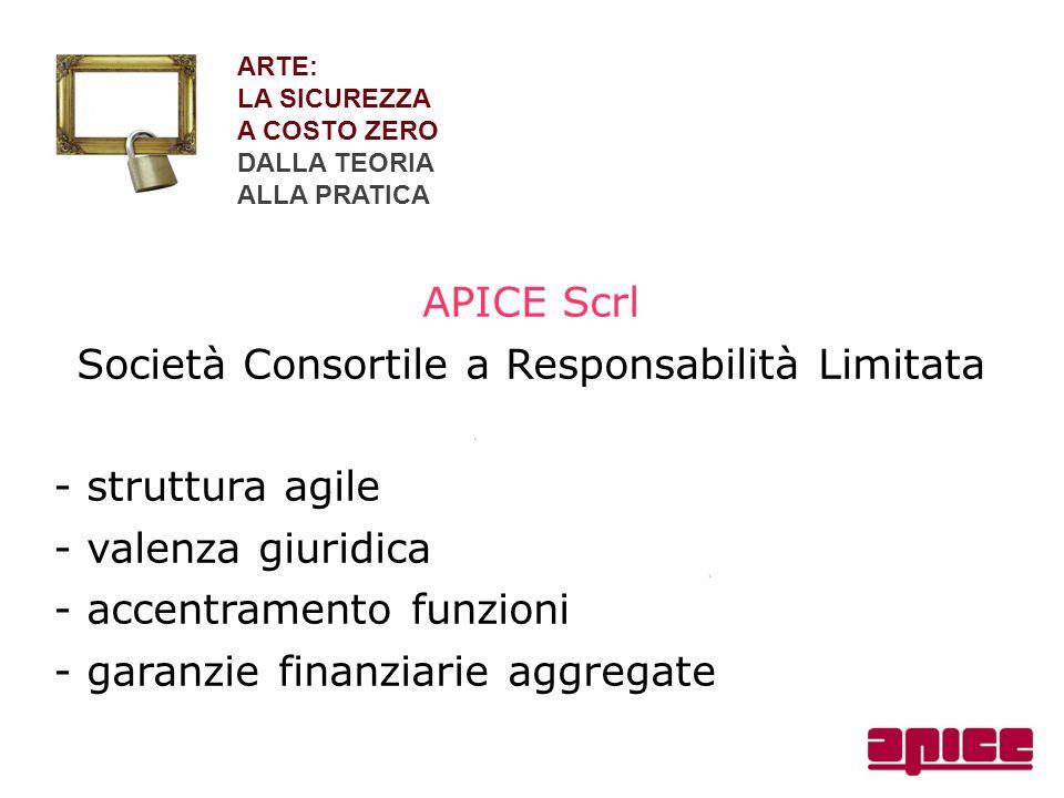 ARTE: LA SICUREZZA A COSTO ZERO DALLA TEORIA ALLA PRATICA APICE Scrl Società Consortile a Responsabilità Limitata - struttura agile - valenza giuridic