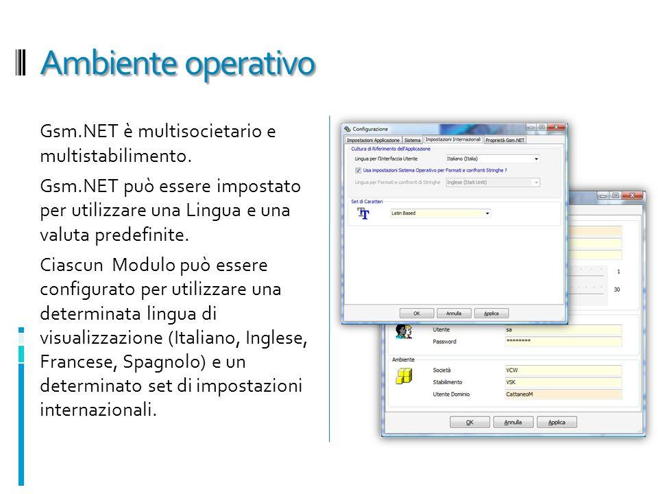 Ambiente operativo Gsm.NET è multisocietario e multistabilimento. Gsm.NET può essere impostato per utilizzare una Lingua e una valuta predefinite. Cia