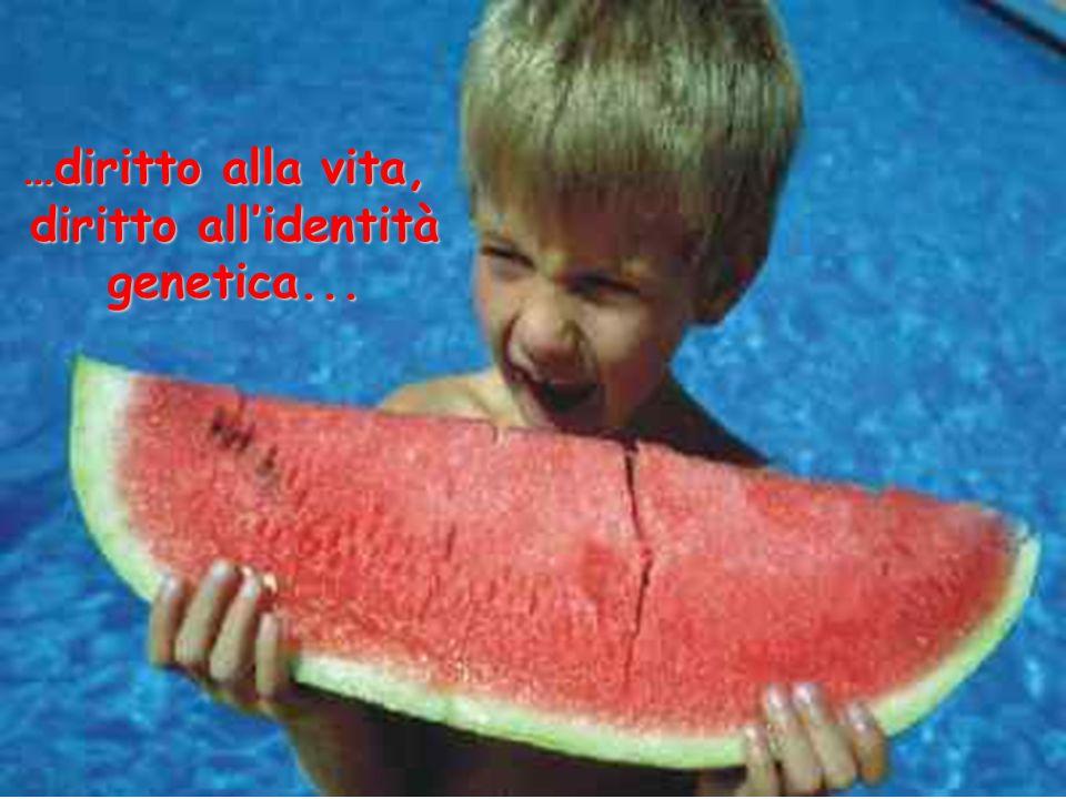 …diritto alla vita, diritto allidentità diritto allidentità genetica... genetica...