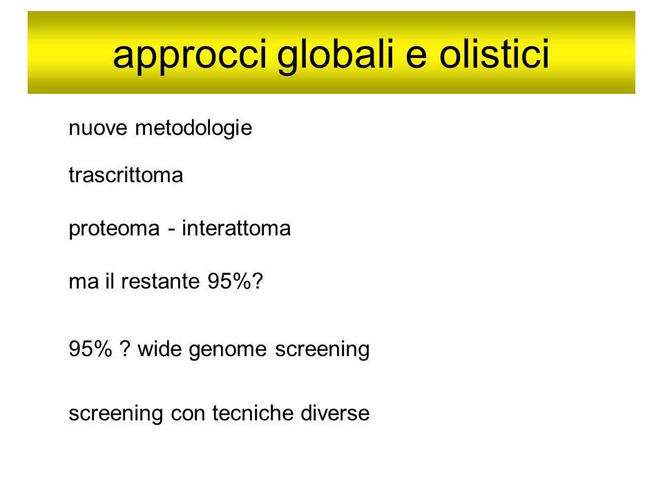 approcci globali e olistici nuove metodologie trascrittoma proteoma - interattoma ma il restante 95%? 95% ? wide genome screening screening con tecnic