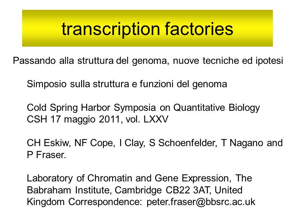 transcription factories Simposio sulla struttura e funzioni del genoma Cold Spring Harbor Symposia on Quantitative Biology CSH 17 maggio 2011, vol.
