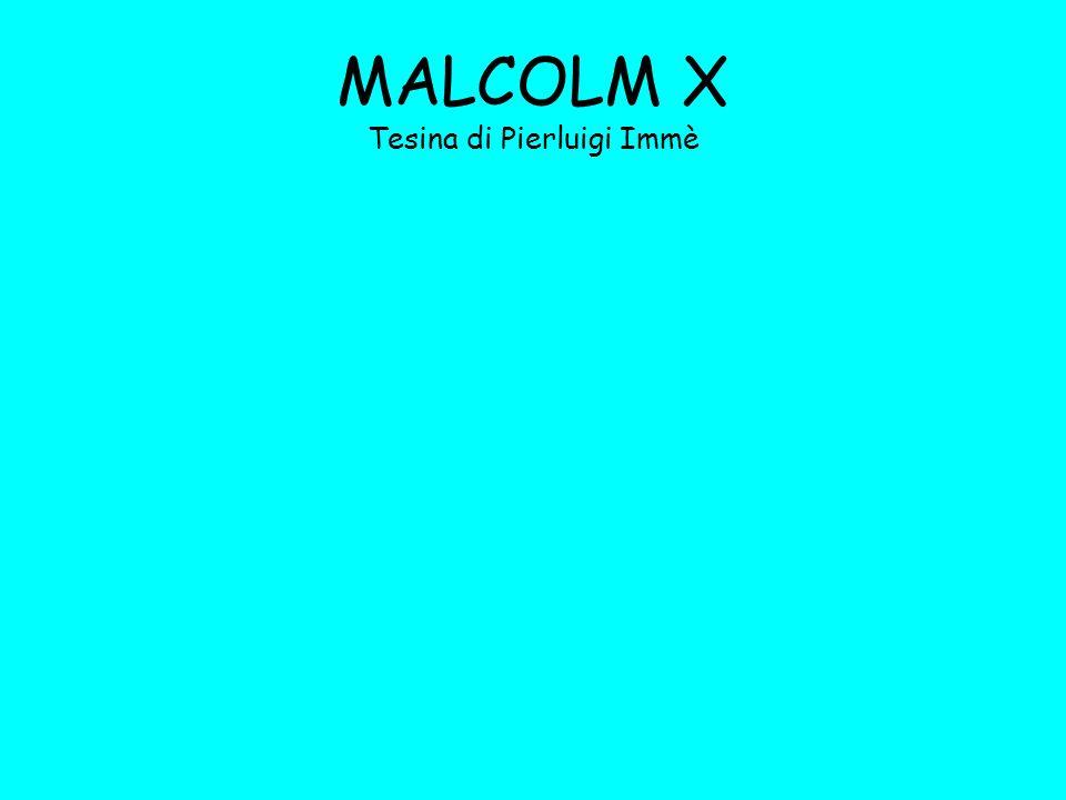 MALCOLM X Tesina di Pierluigi Immè
