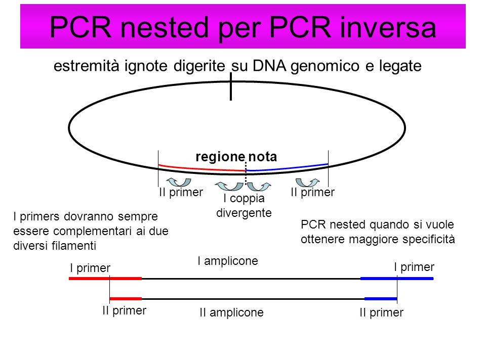 PCR nested per PCR inversa estremità ignote digerite su DNA genomico e legate regione nota I primers dovranno sempre essere complementari ai due diver