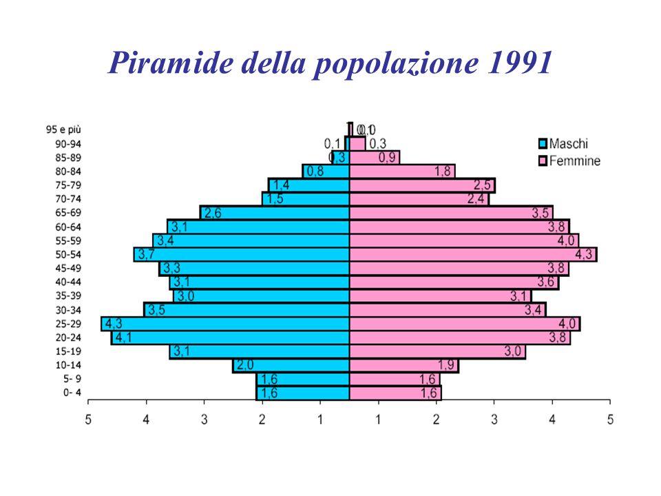 Piramide della popolazione 1991