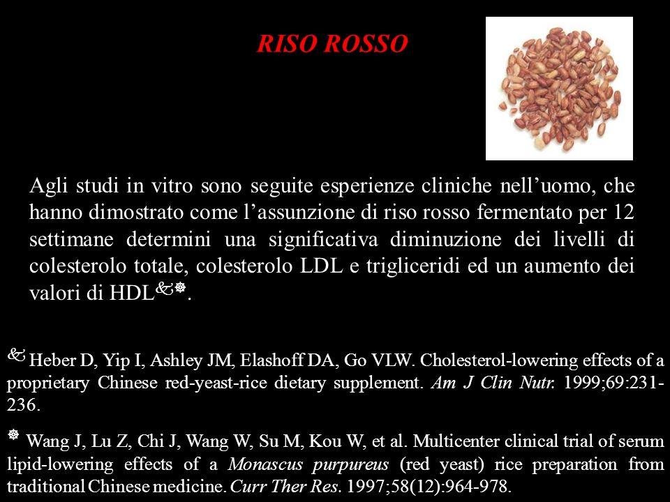 RISO ROSSO Agli studi in vitro sono seguite esperienze cliniche nelluomo, che hanno dimostrato come lassunzione di riso rosso fermentato per 12 settim